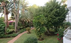 Garden at Abora Catarina